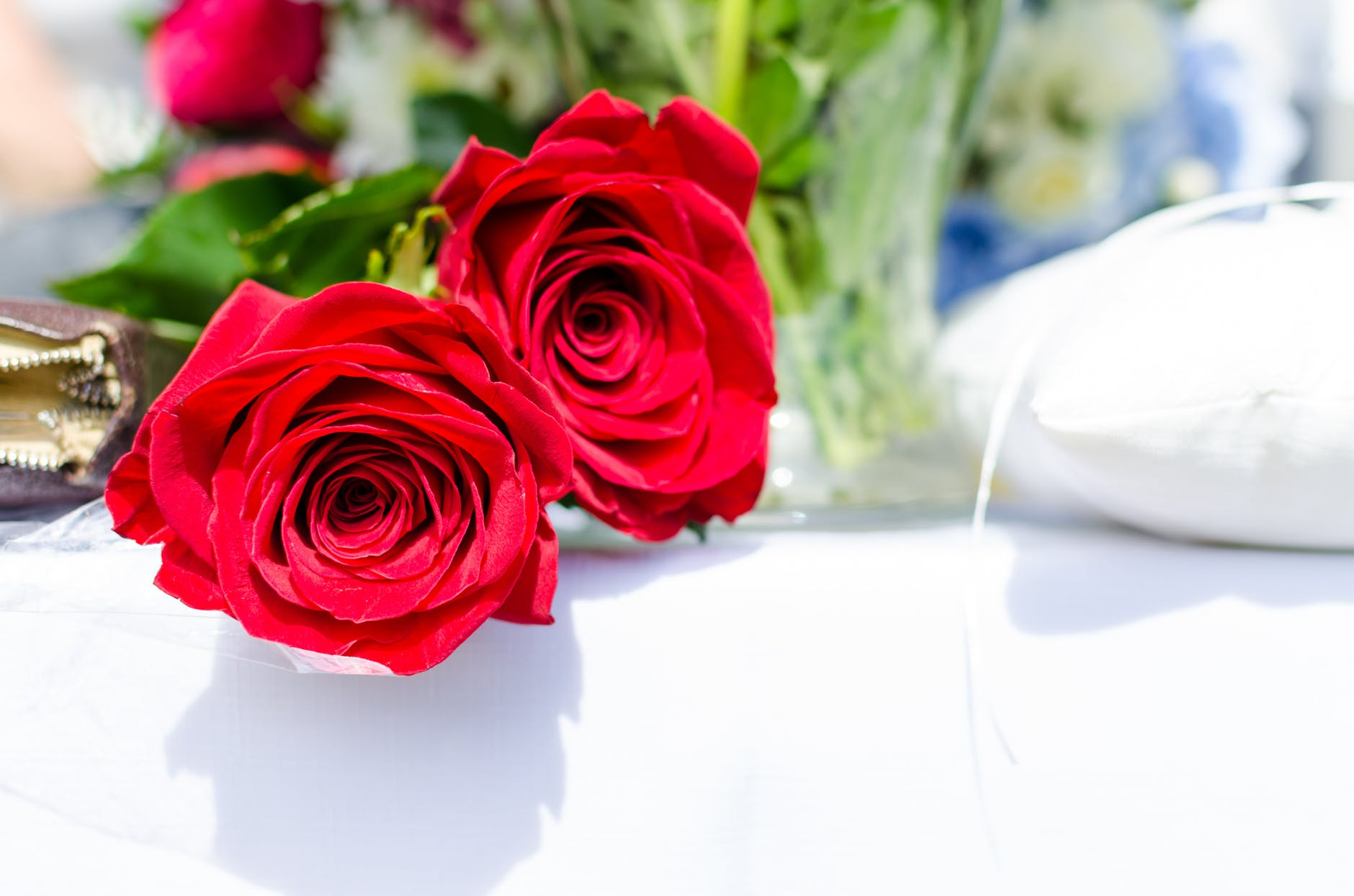 Rose Day 2020 Quotes, Wallpaper, Sms, Song
