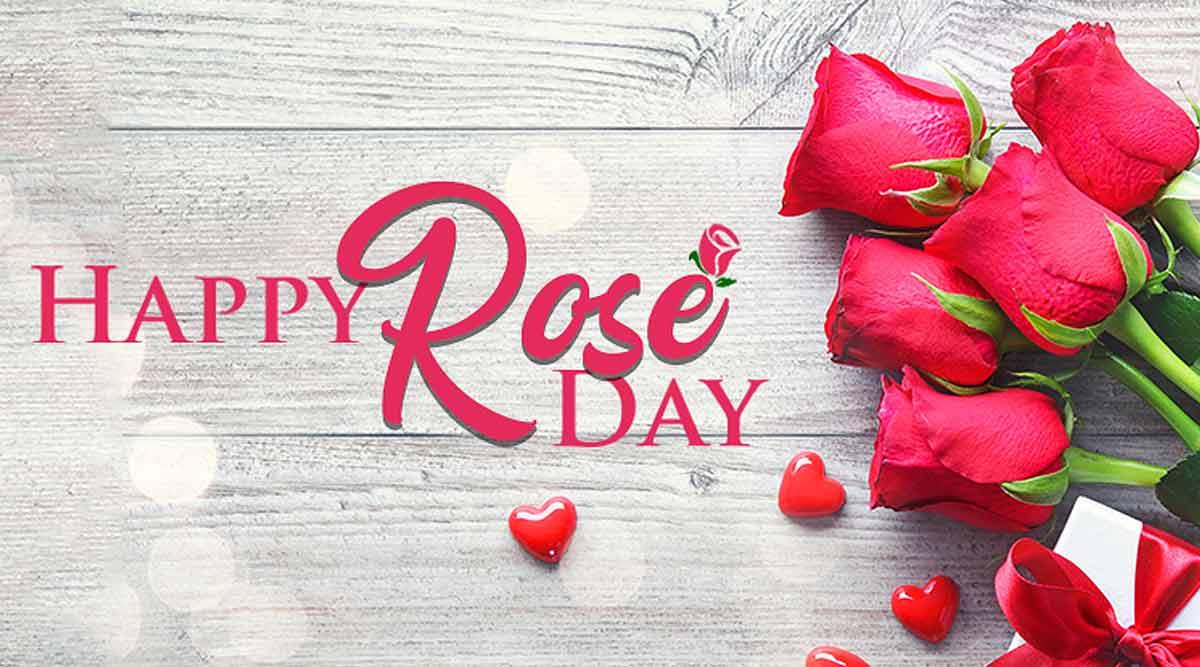 Valentine Week Rose Day Images HD Download